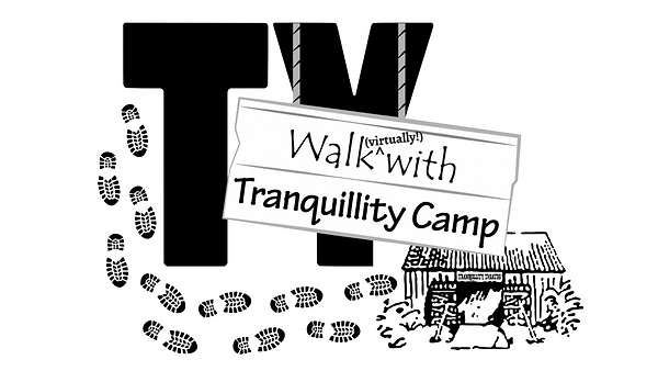 Virtual Walk With TY logo.png