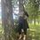 Thumbnail: LAWN PRINTED DRESS