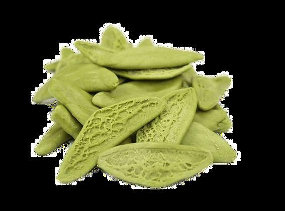 Foglie di ulivo verdi