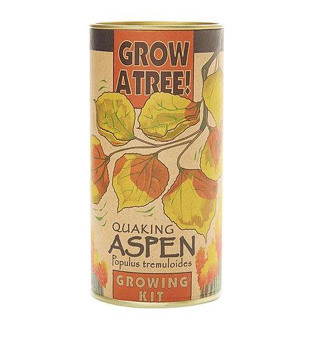 Quaking Aspen - Seed Grow Kit