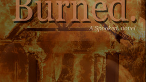 BURNED. by Diana Rosengard now available!
