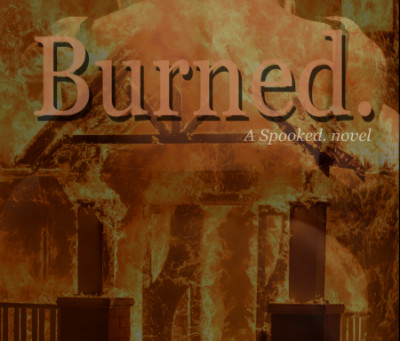 Cover Reveal: BURNED. by Diana Rosengard!