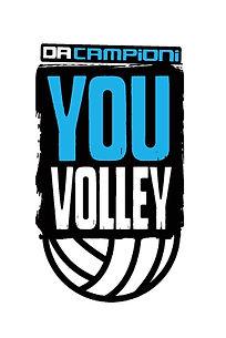 YV-logo-.jpg