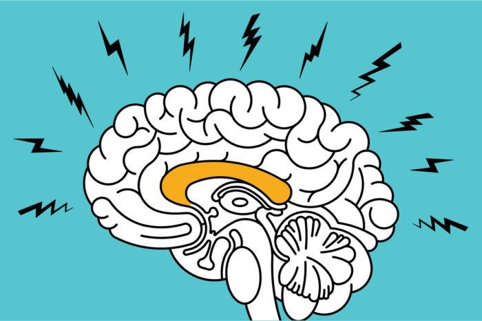 gráfica_de_cerebro_en_alerta