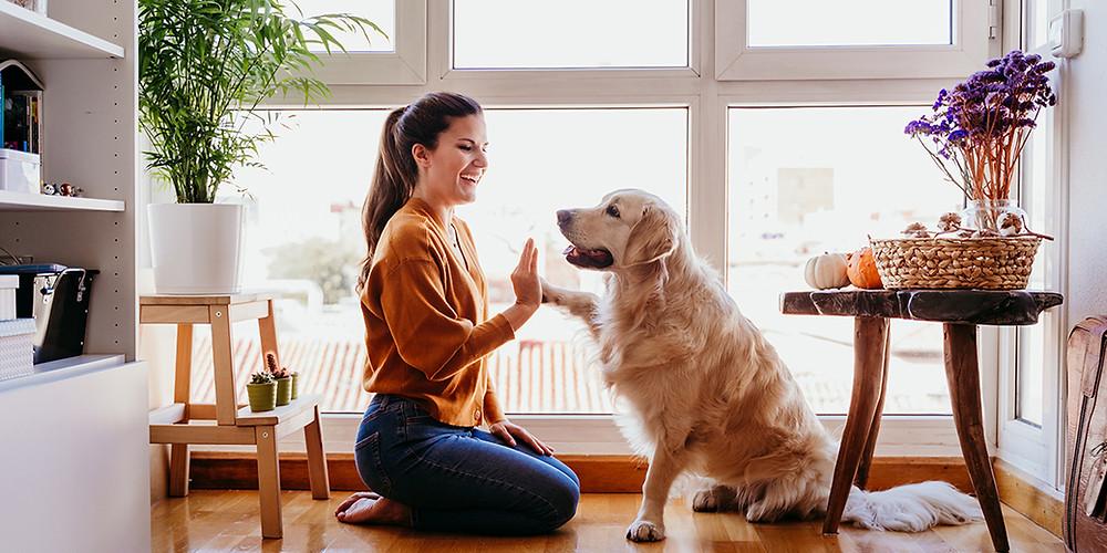 mujer_sentada_con_su_perro_contenta