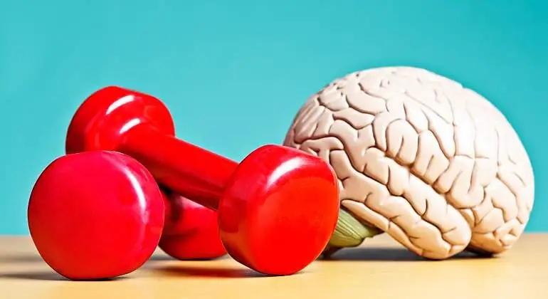 pesas_y_figura__plastica_del_cerebro_humano