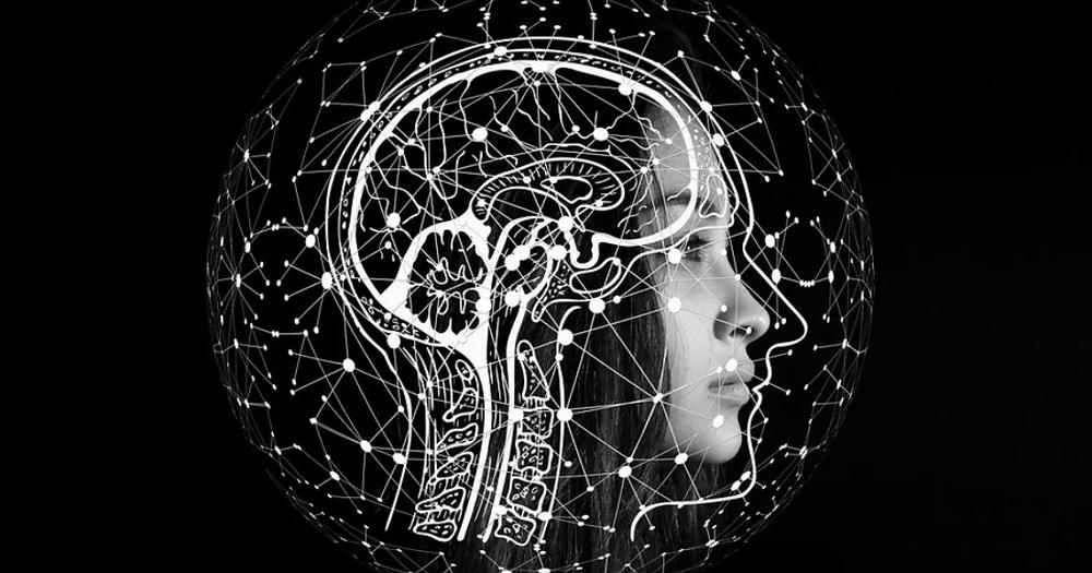 gráfica_esqueletal_y_del_cerebro