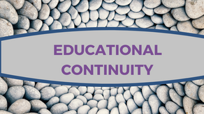 Educational Continuity: Challenges Facing Universities/Colleges in Developing Nations