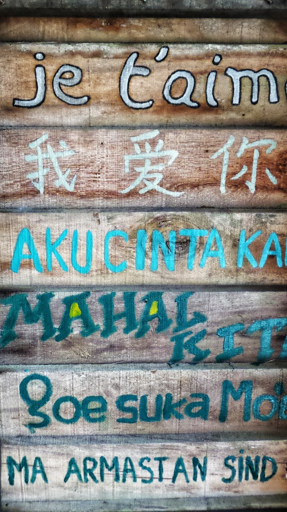 Wooden background to words in non-English