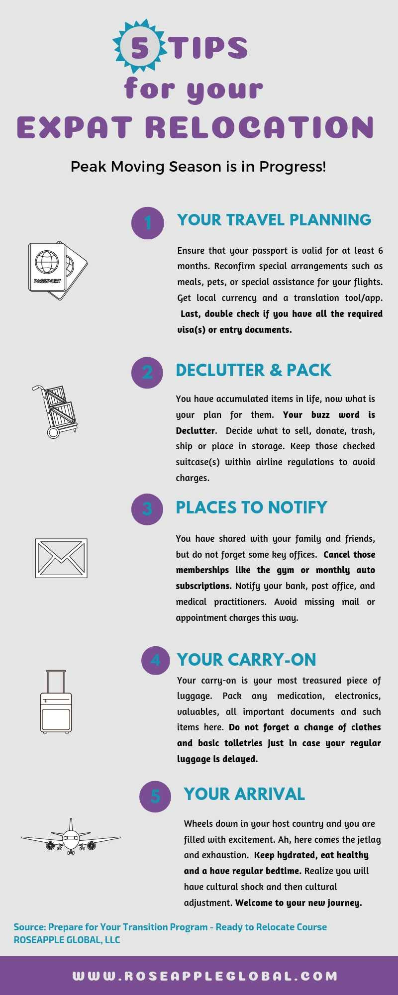 Expat Relocation Infographic