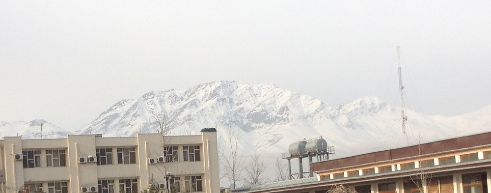 Tops of building with snow capped mountain in background