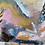 Thumbnail: cockatoo homeland
