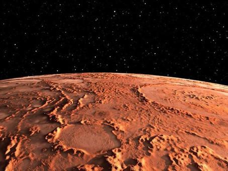 Preparan granja de vegetales apta para Marte