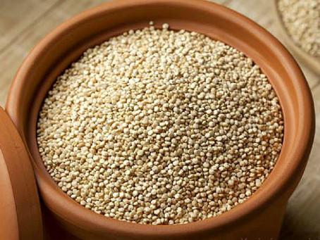 Quinoa, un alimento del futuro