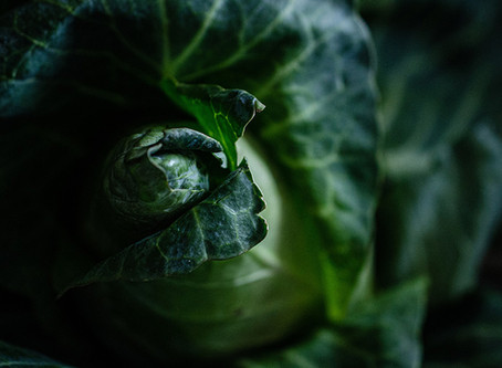 Esta aplicación te ayuda a comer más vegetales