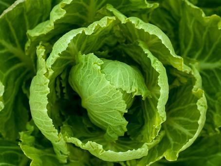 Vegetales de hoja verde benefician la fuerza muscular