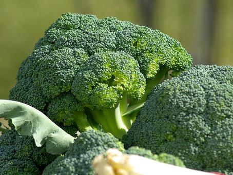 Proteínas vegetales reducen el riesgo de mortalidad prematura