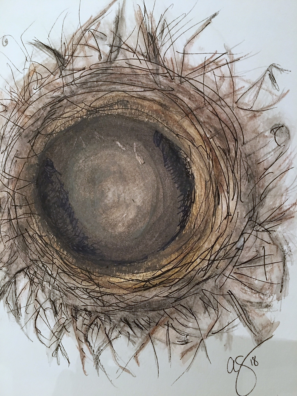 empty nest photograph by therapist from Sanctuary Christian Counseling in Shippensburg PA