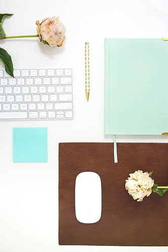 Various teal colored items -- notebook, mouse, rose in Pennsylvania