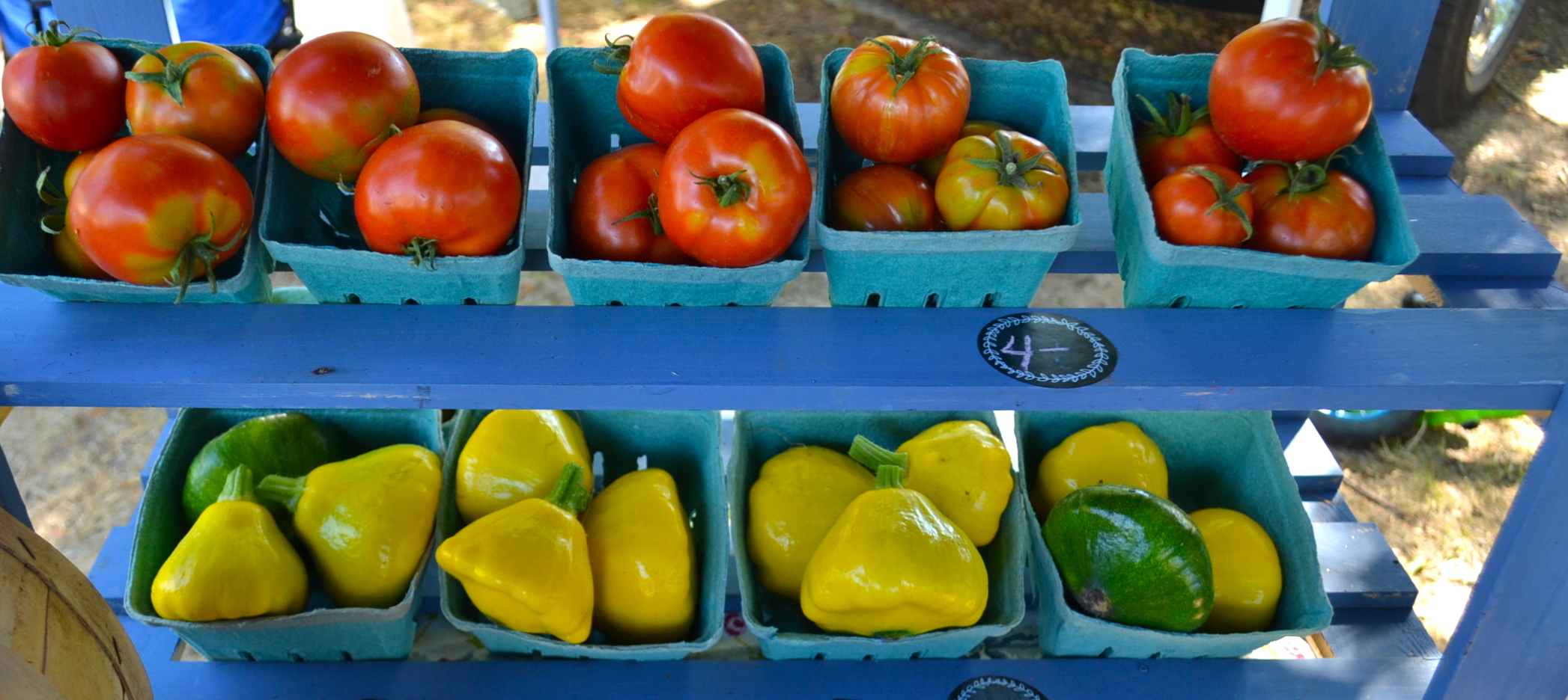 tomatoes&scallopini