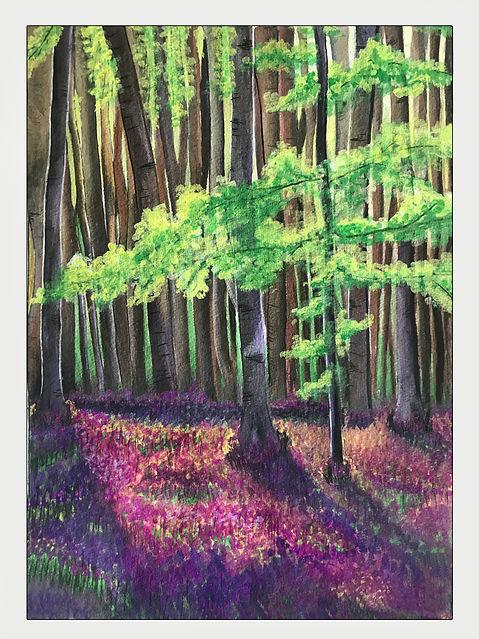 Fairyland forest - hallerbos.jpg