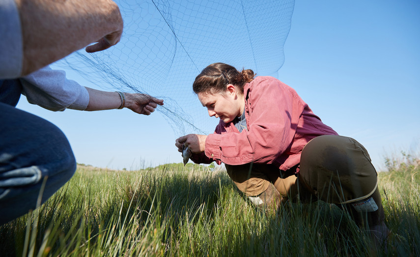 Katie-Extracting-Bird-From-Net-Banding-2