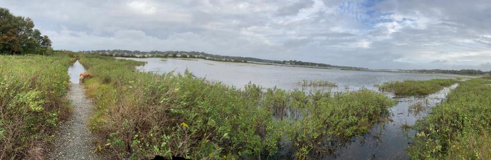Deirdre-JP-Flooded-2020-09-30-5050.jpg