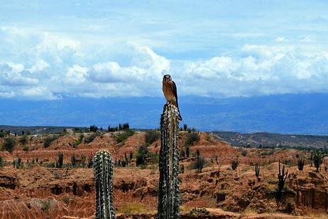Desierto_de_la_Tataoca-Disfruta_San_Agus