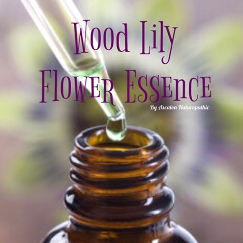 Wood Lily Flower Essence - Channeling Creative Force