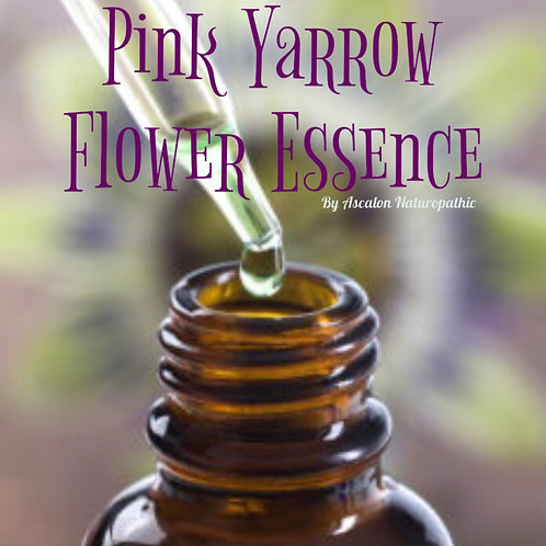Pink Yarrow Flower Essence -Auric Field Protection