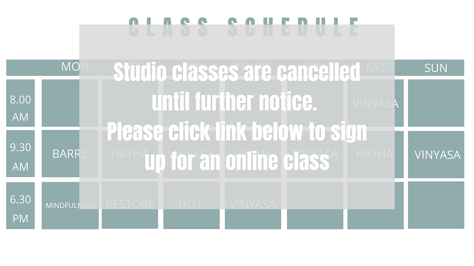 Copy of Class Schedule 2021.png