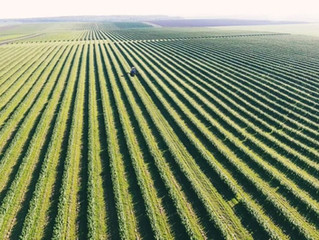 Anuvia Raises $103M Series C to Expand its GHG-Reducing Crop Input