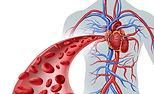 Dr. Lozano Balderas Cirugía Vascular