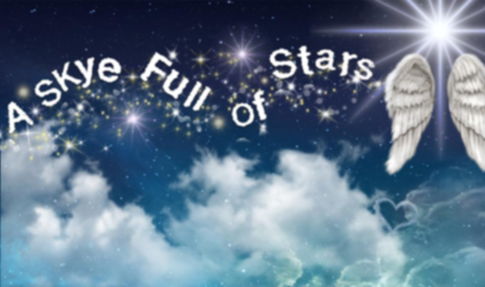 A Skye Full of Stars logo with wings. .jpg