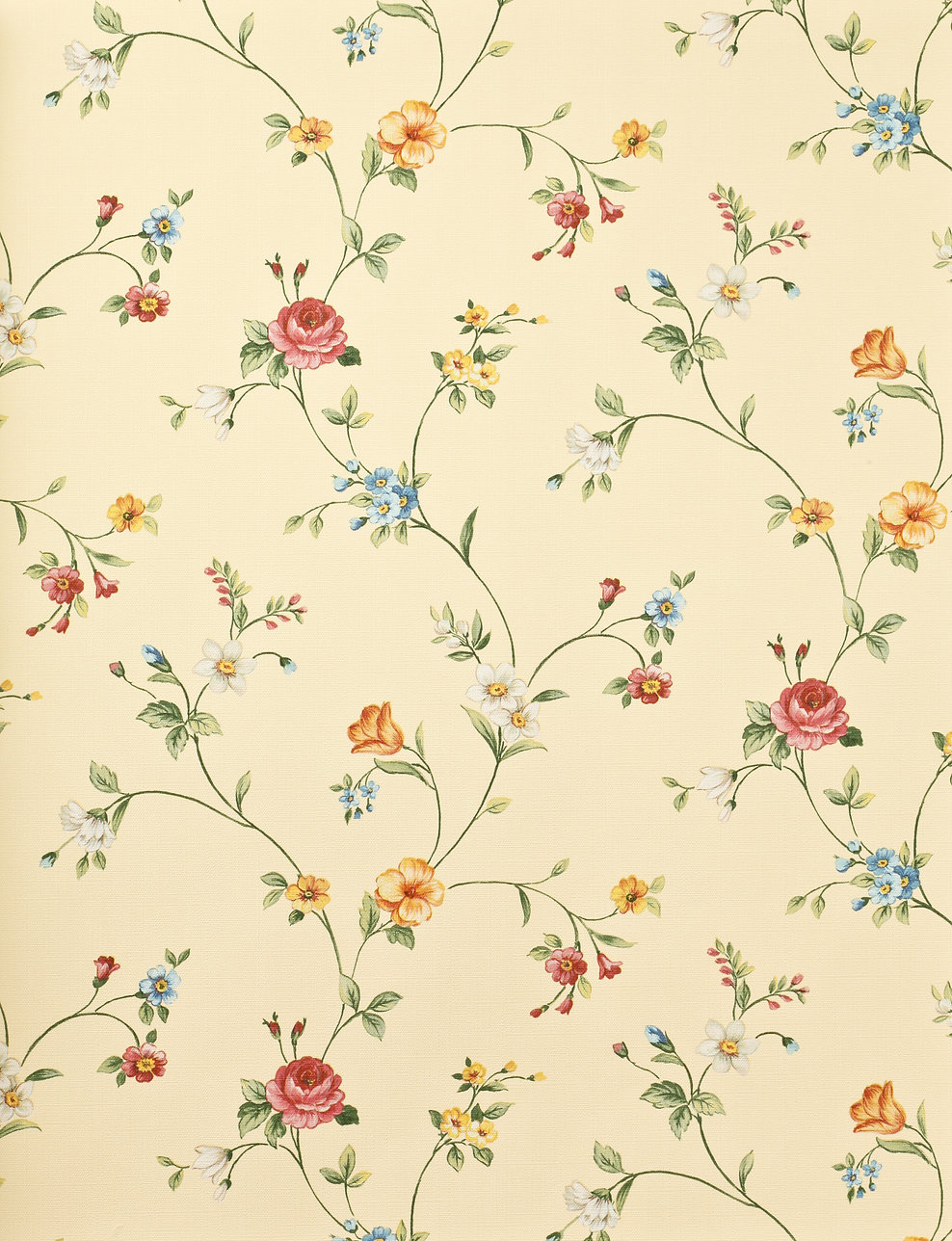 Retro floral background.jpg