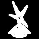 intercoiffure_logo_transparent_weiß.png