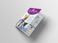 Brochure_C4P2.jpg