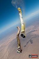 Skydive Painting by Vedi Djokich vexedar