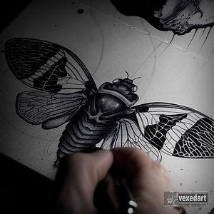 cicada art pen drawing in sketchbook