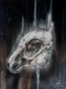 rabbit skull screen printed art limited edition art prints