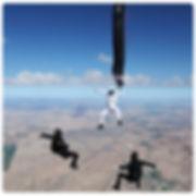 Niklas Daniel, Steve Curtis, Sara Curtis, Jason Peters skydive art