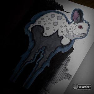 rabbit drawing marker art work