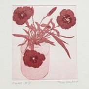 Pinks (unframed) £60.00