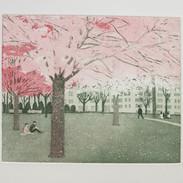 Spring Again (unframed) £90.00
