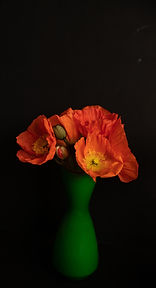 Orange poppies green vase.jpg