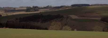 Fields, England