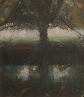 Millpond Reflections 2