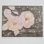 Roses on the Wall (unframed) £70.00