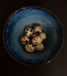 Quail eggs and bowl 2.jpg