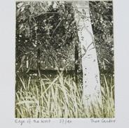 Edge of the Wood (unframed) £60.00